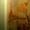 Отделка,ремонт квартир,домов.Обои,шпаклевка,ламинат,штукатурка/ - Изображение #4, Объявление #1625567