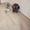 Отделка,ремонт квартир,домов.Обои,шпаклевка,ламинат,штукатурка/ - Изображение #5, Объявление #1625567
