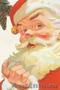 Дед Мороз к Вам в гости !