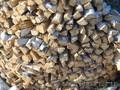 Дрова колотые береза осина ольха сосна