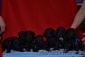 Миттельшнауцер черного окраса