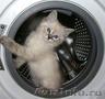 Ремонт стиральных машин в Челябинске. Недорого.