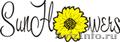 Заказ и доставка цветов,  букетов в Челябинске