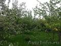 Садовый участок в обжитом саду Тракторосад №3 Чурилово - Изображение #3, Объявление #1444237