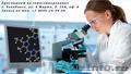 Диагностика систем организма - гемосканирование., Объявление #1480413