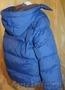 Продам курточку - Изображение #4, Объявление #1538333