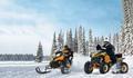 Права на квадроцикл и снегоход (А1)